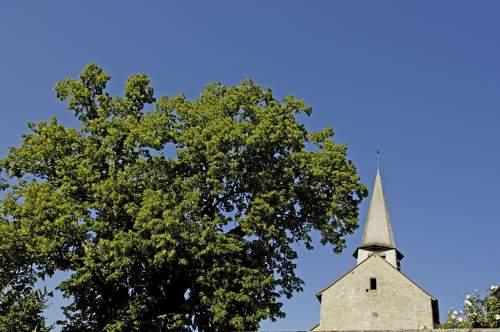 Gîte de 12 personnes en Creuse - Le clochet d'Anzeme